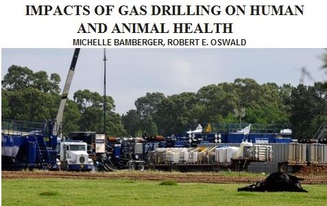 Добыча сланцевого газа в США