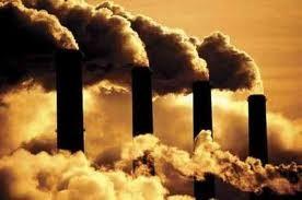 Экологическая амнистия