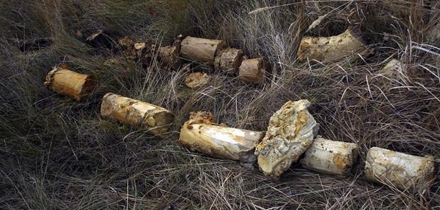 Купить месторождение глины в Курганской области